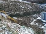 イノシシに掘られた跡